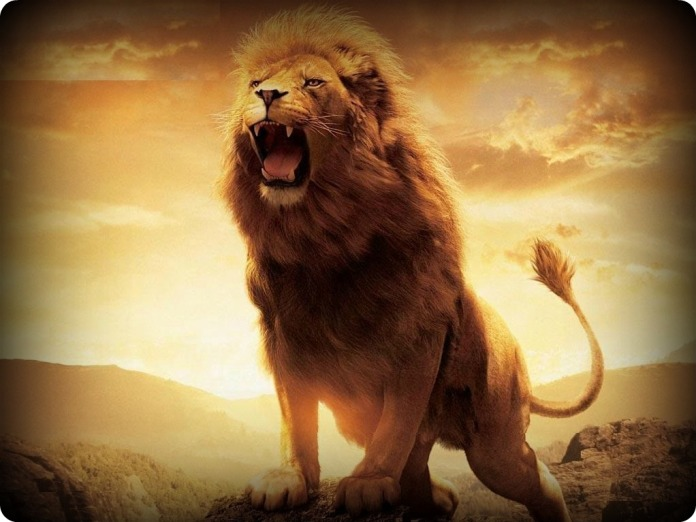 lion-roar1